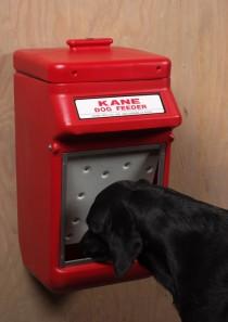 Kane Dog Feeder